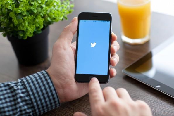 Twitter bringt für CEOs einige Vorteile mit sich – beispielsweise um ein Netzwerk aufzubauen. (Foto: Denys Prykhodov / Shutterstock.com)