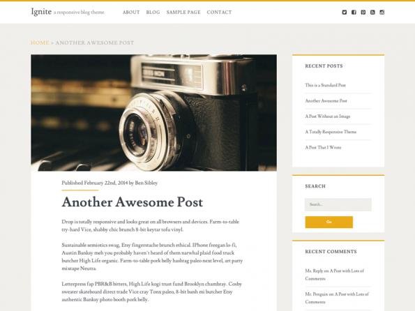 Die Nutzer des WordPress-Themes Ignite loben vor allem den guten Support. (Screenshot: Ignite)