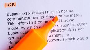 Was sich B2B-Kunden im E-Commerce wünschen [Studie]