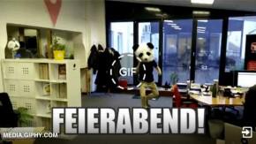 Die besten GIFs, um den Büroalltag aufzulockern