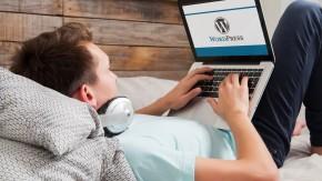 WordPress auf HTTPS: So stellst du deine Seite komplett um