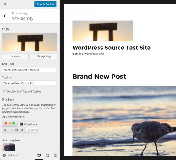 Wenn vom Theme unterstützt, kann ab der ersten Beta von WordPress 4.5 im Customizer ein Site-Logo festgelegt werden. (Screenshot: WordPress.org)