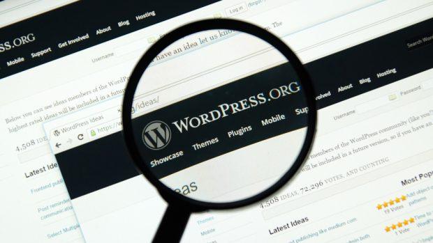 Wix soll sich bei Wordpress-Code bedient haben. (Foto: dennizn / Shutterstock.com)