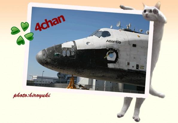 Der 4chan-Gründer Christopher Poole arbeitet jetzt für Google. (Screenshot: 4chan.org)