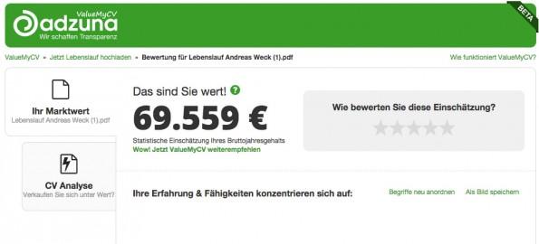Wie hoch ist mein Marktwert? ValueMyCV verrät es dir – und prüft nebenbei deinen Lebenslauf. (Screenshot: t3n.de)