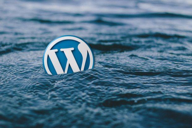 Damit dir WordPress nicht absäuft, integriere es mit Git. (Foto: Pixabay)