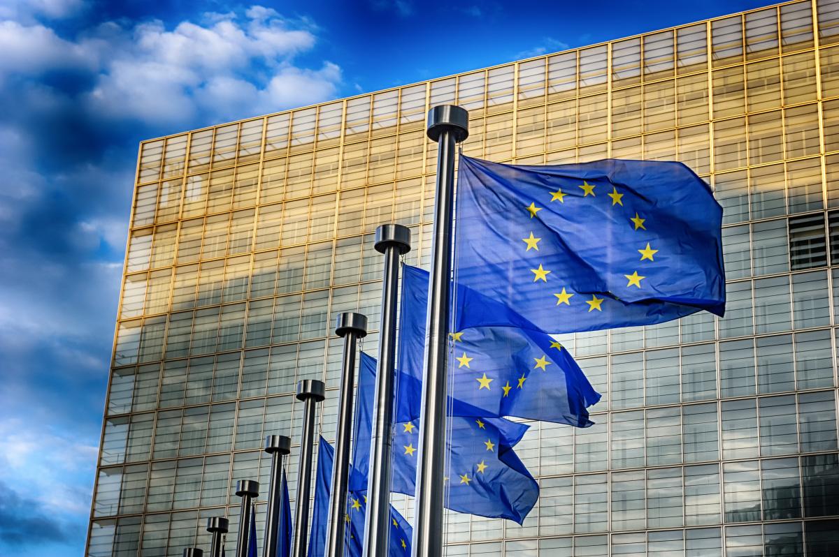 EU Fee needs to advertise large-scale, transnational digital tasks thumbnail